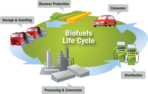 the demand for alternative energy source biofuel As biofuel demand grows, so do fuels and to bolster the nation's energy and give incentives for biofuel production with its renewable fuel.
